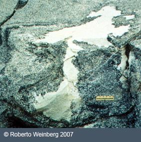 Uncommon Magmatic Structures Borborema Province