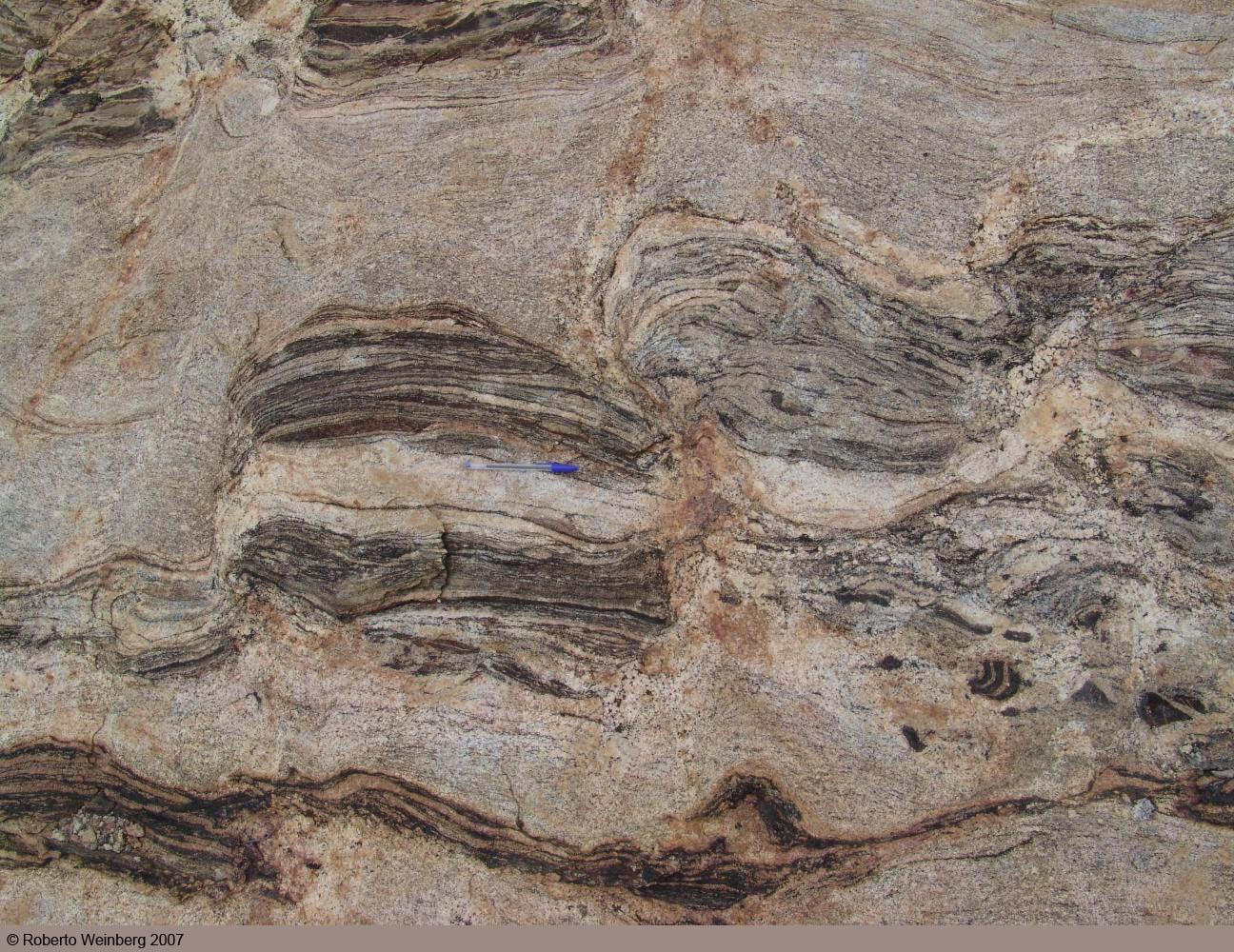 Migmatites from Sertania: Borborema Province